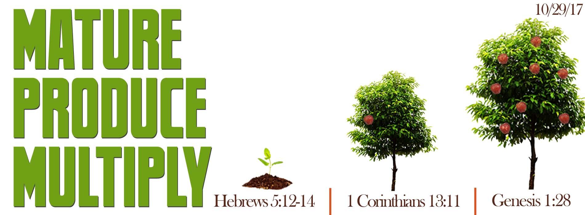 trees fruit united faith church